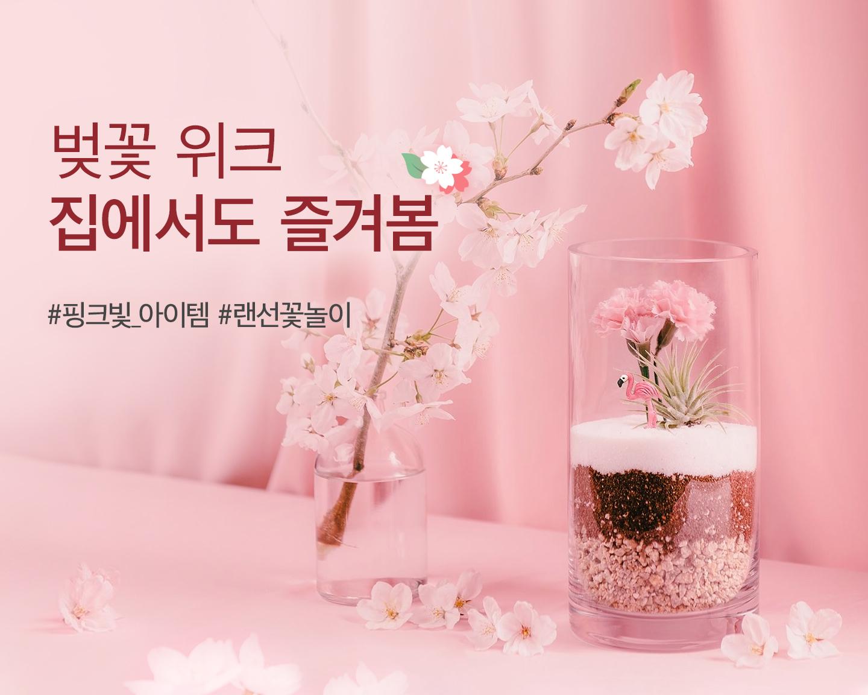 벚꽃 위크, 집에서도 즐겨봄